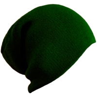 Шапка Wind X-treme BEANIE GREEN
